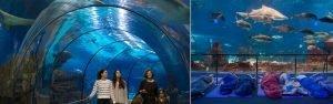 巴塞隆納水族館