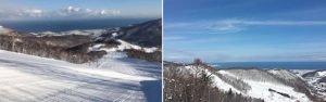 小樽朝里川溫泉滑雪場